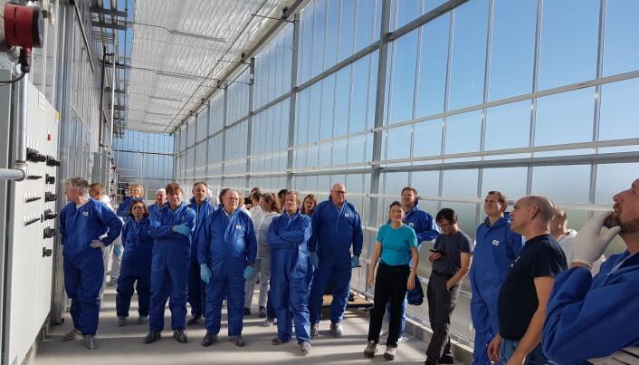 Over 30 veksthusgartnere samarbeider tett med forskerne for å finne løsninger for morgendagens tomater, agurker og salat. Her er de på besøk i forsøksveksthusene til NIBIO på Særheim, Klepp. (Foto: Michel Verheul, NIBIO).