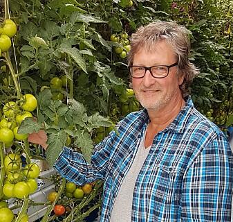 Sammenlignet med Nederland får vi 50 prosent større avlinger per kvadratmeter av tomater og agurker i Norge. Likevel mener folk flest at Norge er et land som ikke egner seg for veksthusproduksjon av grønnsaker, sier forsker Michel Verheul. (Foto: Henk Maessen, NIBIO).