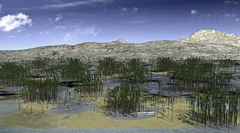Slik kan trær ha sett ut for 365 millioner år siden