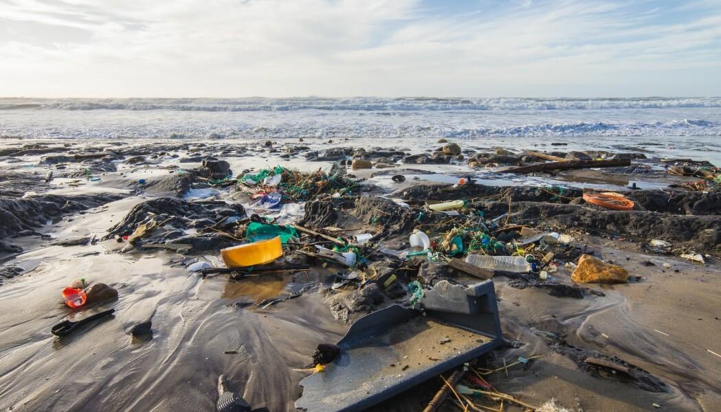 Er det bærekraftig å utnytte havets ressurser enda mer, slik regjeringen har som mål? Bildet er fra stranda i Montalivet i Frankrike. (Foto: Lycia W, Shutterstock, NTB scanpix)
