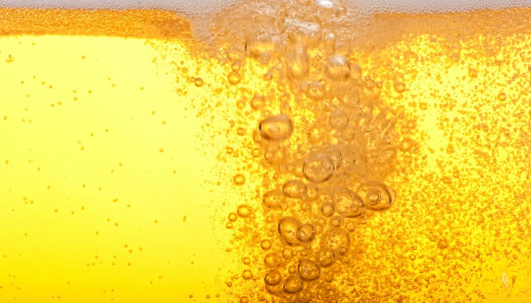Det er ikke godt å si om det kinesiske ølet var like gyllent og klart som denne moderne pilsneren. (Illustrasjonsbilde: Shutterstock/NTB Scanpix)