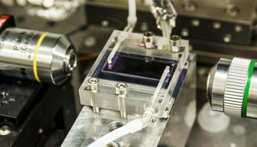 Denne mobile metangassensoren er langt mer sensitiv enn andre sensorer i samme prisklasse, ifølge forskerne som har utviklet den. (Foto: Jana Jágerská)
