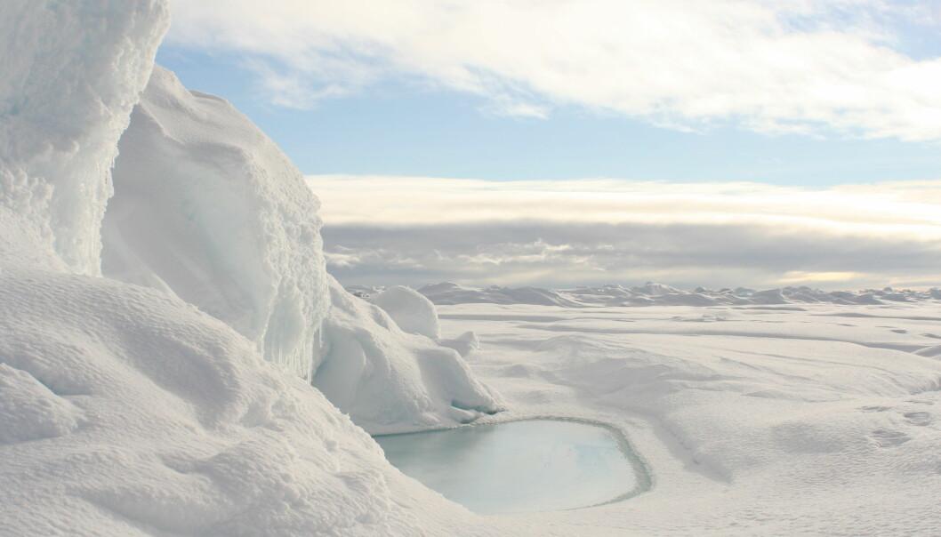 Arktisk sjøis utstråler renhet. Men også her finner man menneskeskapte kjemiske stoffer, som påvirker livet i havet og i isen. [Foto: Lena Seuthe, UiT / The Nansen Legacy]