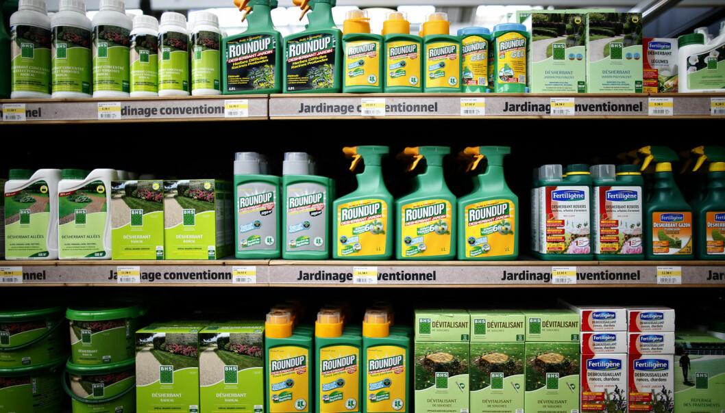 Plantevernmiddelet Roundup er praktisk talt ikke giftig. Eller, det trodde vi på 1980 tallet. Nå er Norges mest brukte sprøytemiddel hormonforstyrrende og trolig kreftfremkallende, skriver kronikkforfatteren. (Foto: NTB Scanpix)