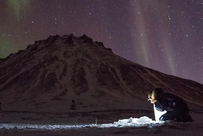 Å jobbe i polarnatten kan være hardt. Men også vakkert. (Foto: Øystein Varpe, UNIS)