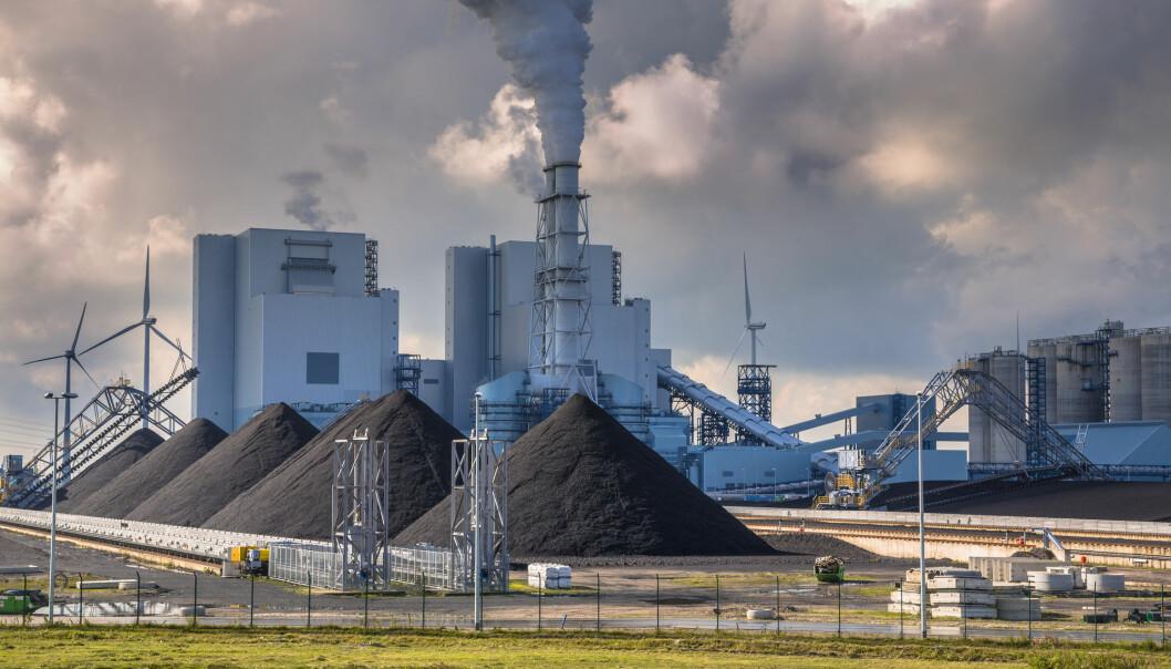 Fra svart til grønn: Forskningsprosjektet Arbaheat har gjort det mulig å erstatte kull med trepellets. Et kullkraftverk i Rotterdam er nå i gang med å bruke løsningen. (Illustrasjon: Rudmer Zwerver / Shutterstock / NTB scanpix)