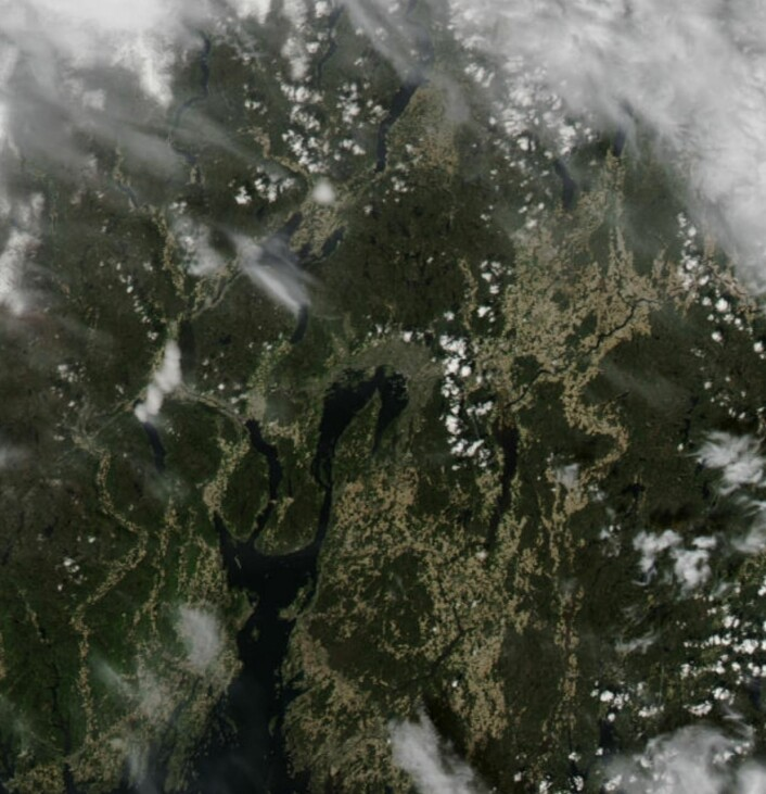17 mai-været rundt Oslofjorden, sett fra NASAs satellitt Aqua. (Bilde: NASA Aqua MODIS)