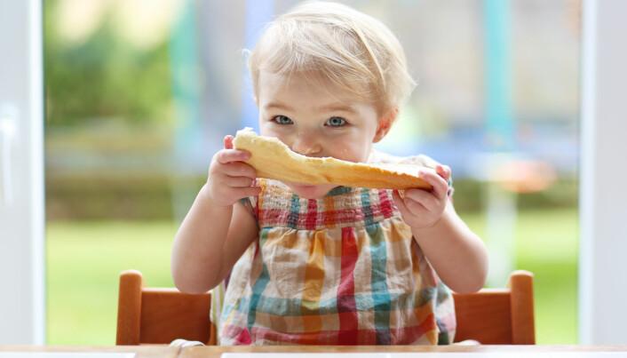 Forskere kobler mye gluten tidlig i livet til høyere risiko for cøliaki