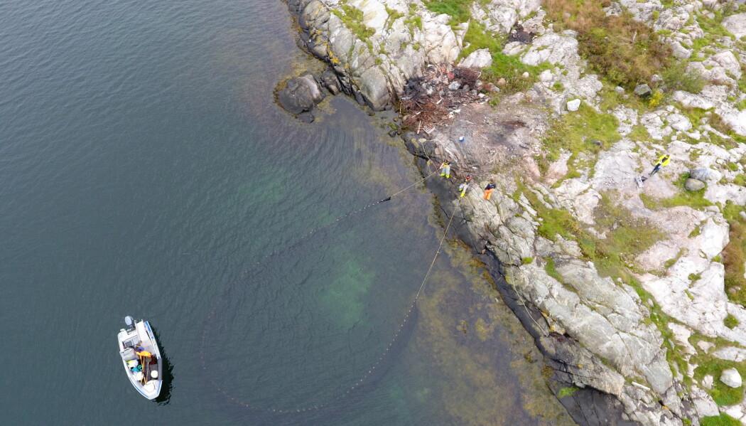 Her fanger forskere fisk og andre arter med not i stranda for å måle tilstanden i havet. Over mange år har fangsten blitt mindre og mindre. (Foto: Espen Bierud / Havforskningsinstituttet)