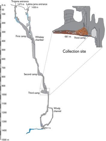 Andersen og kollegaene har ikke selv vært ved funnstedet, nesten 1000 meter nede i Lukina Jama-Trojama-hulene i Kroatia. Denne nedfarten er for eksperter. (Foto: (Illustrasjon: Andersen m.fl./Plos One))