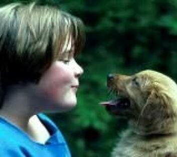 Det er ikke særlig smigrende hvis mamma eller pappa forsnakker seg og forveksler ditt og hundens navn. Ifølge en ny studie er slett ikke dette uvanlig.