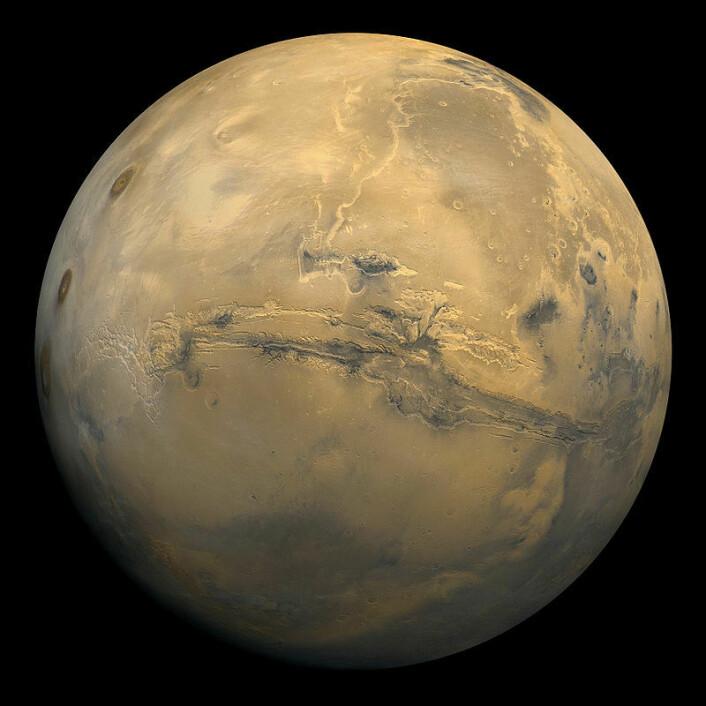 Den store dalen i midten av dette bildet kalles Vallis Marineris, og er en karakteristisk geologisk formasjon på Mars. (Foto: NASA)