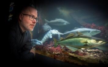 Forsker Sonnich Meier ved Havforskningsinstituttet trakk seg som ekstern rådgiver til prosjektet NYKOS. (Foto: Jan M. Lillebø, Bergens Tidende)