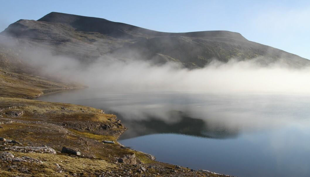I Ellasjøen på Bjørnøya følger forskere spent med på utviklingen til ishavsrøya. (Foto: Guttorm Christensen, Akvaplan-NIVA)