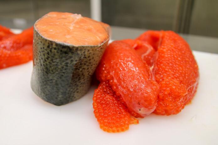 Ørretens rogn har en lekker rødoransje farge, og gjør seg godt som kaviar. (Foto: Stein Harris Olsen © Nofima)