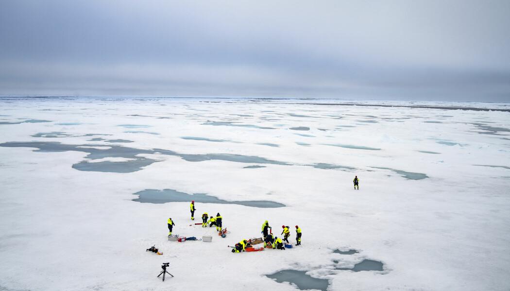 Det å jobbe på isen og ta prøver er et håndverk som krever øvelse. Derfor legger Arven etter Nansen ekstra vekt på å gi sine unge forskere en solid opplæring i hvordan arbeidet på isen må foregå. (Foto: Siv N. K. Hoff, UiO / The Nansen Legacy)