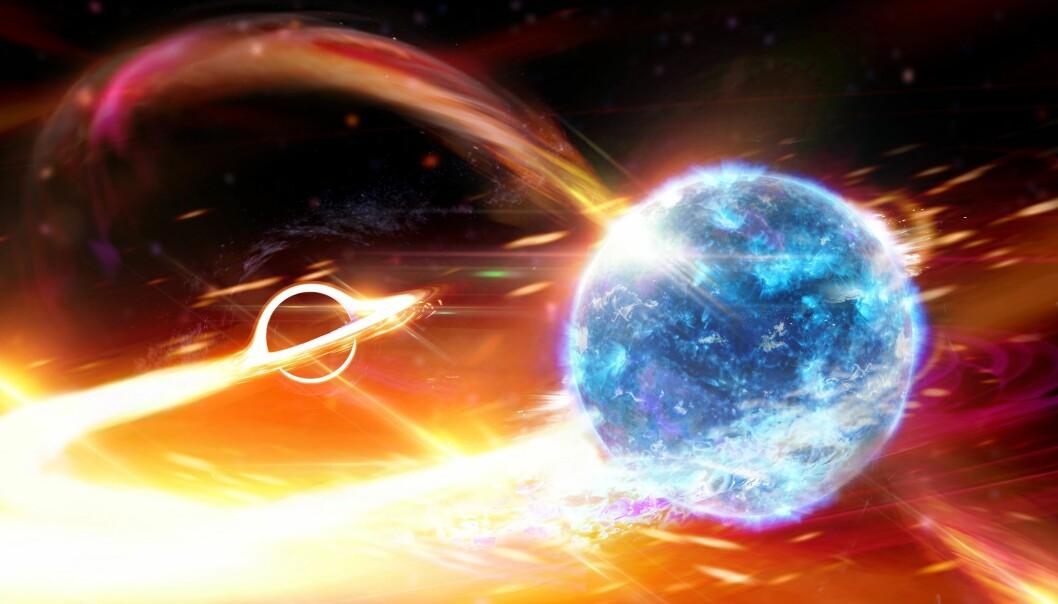 Illustrasjon av et sort hull i ferd med å sluke en nøytronstjerne. (Illustrasjon: Carl Knox, OzGrav ARC Centre of Excellence)