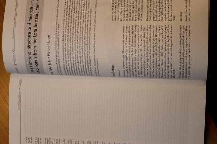 Slik ser den altså ut, den vitenskapelige artikkelen. Denne er basert på min masteroppgave. Foto: LLD