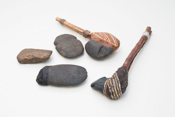 Fragmentene kommer fra økser med skaft som dette, konkluderer de australske arkeologene. (Foto: Stuart hay, ANU)