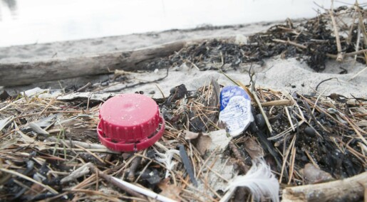 WHO: Mikroplast i vann har lav helserisiko
