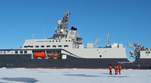 72 millioner tonn krill i fangstområdet i Antarktis