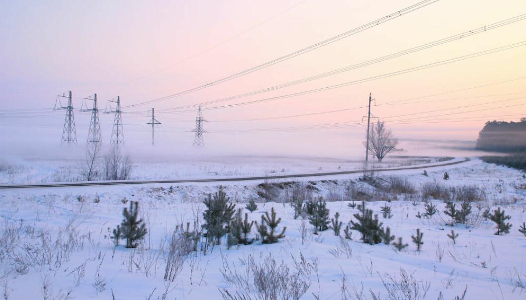 Dagens organisering av strømnettet er ikke så godt som det kunne vært. Professor i energiinformatikk, Frank Eliassen har flere ideer om hvordan vi kan utnytte strømmen bedre.  (Foto: vladimir salman/Shutterstock/NTB scanpix.)