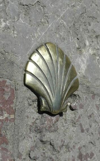 Skjellet er symbolet for pilegrimsveien til Santiago. (Foto: Wikimedia)