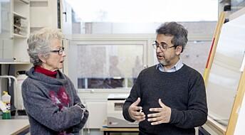 Pårørende i møte med forsker: Hva er det med alzheimer?