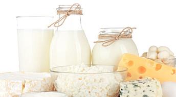 Nye kostråd fra Australia: Trygt å spise fet ost, egg og helmelk