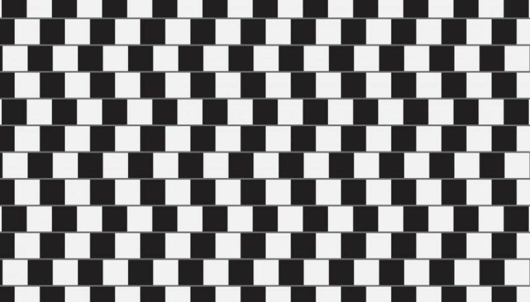 Noen har skjøvet på rutene i sjakkmønsteret. Derfor tror hjernen vår at bortoverstrekene er skjeve. (Foto: hunthomas / Shutterstock / NTB scanpix)