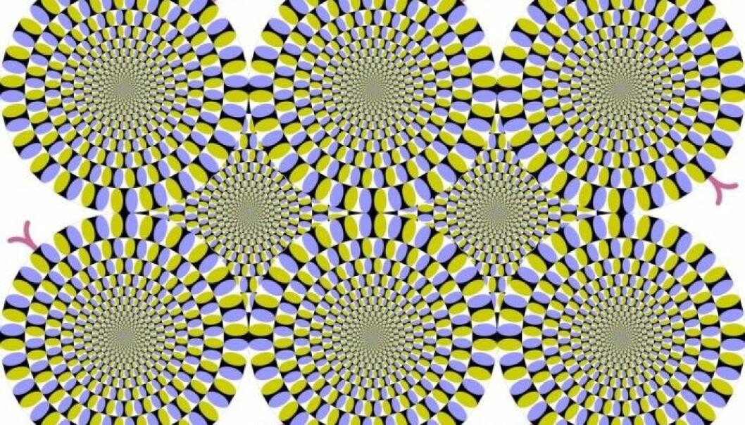 Bildet heter «De roterende slangene». Bildet var med i konkurransen «Best Illusion of the Year Contest» i 2005. (Illustrasjon: Cmglee/Wiki commons)