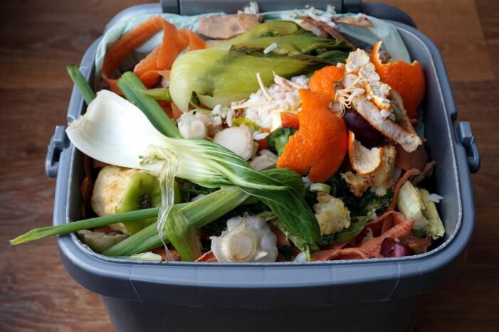 Mye av maten som går rett i søpla, kunne ha vært spist. (Foto: Gary Perkin / Shutterstock / NTB scanpix)