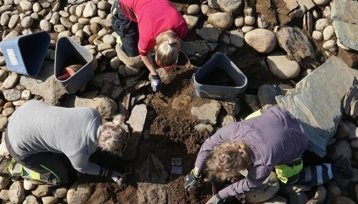 Romersk bronsekjele funnet i gravrøys i Gauldalen