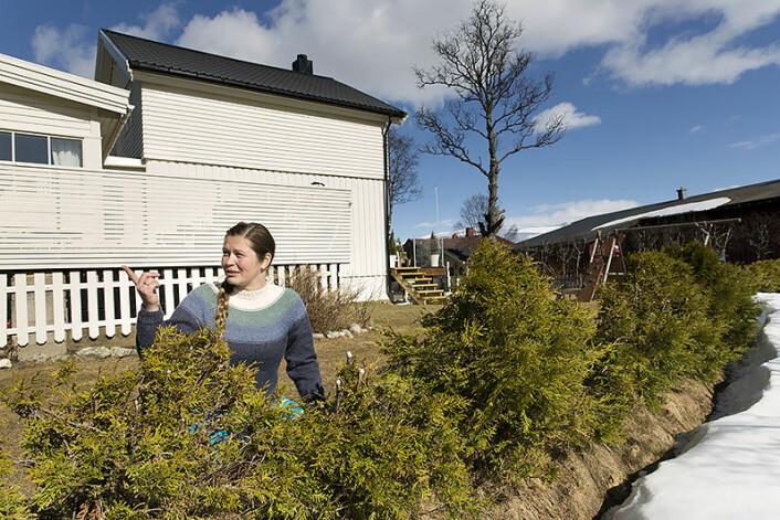 Rundt hagen ligger snøen fortsatt tykk, men innenfor hekken har Charlotte Thorsteinsen i Tromsø assistert våren for å gi blomster, grønnsaker og prydbusker litt starthjelp i april. ( Foto: Stig Brøndbo)