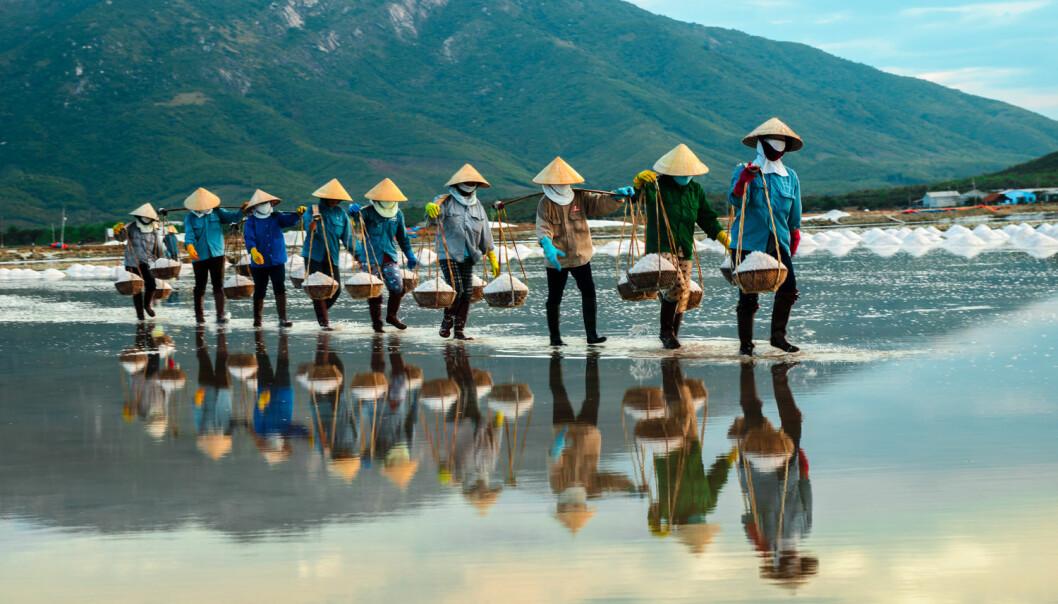 """Når det kommer til fordeling av godene gjør Vietnam det faktisk mye bedre enn Kina, og Verdensbanken har omtalt Vietnams utvikling som bemerkelsesverdig """"pro-poor"""". Bildet er fra NhaTrang, der arbeidere bærer salt til fabrikkene.  (Foto: NTB Scanpix)"""