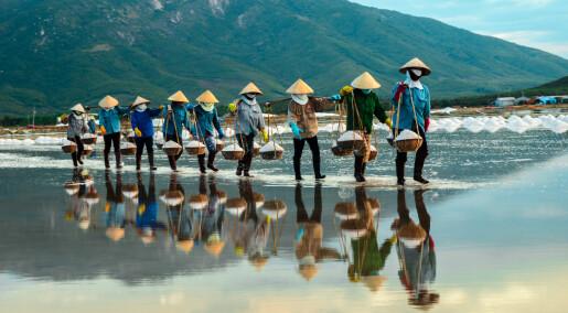 Kronikk: Kan sosialismen ha bekjempet fattigdommen i Kina og Vietnam?