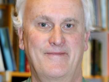 Professor Knut Holtan Sørensen. (Photo: Kilden)