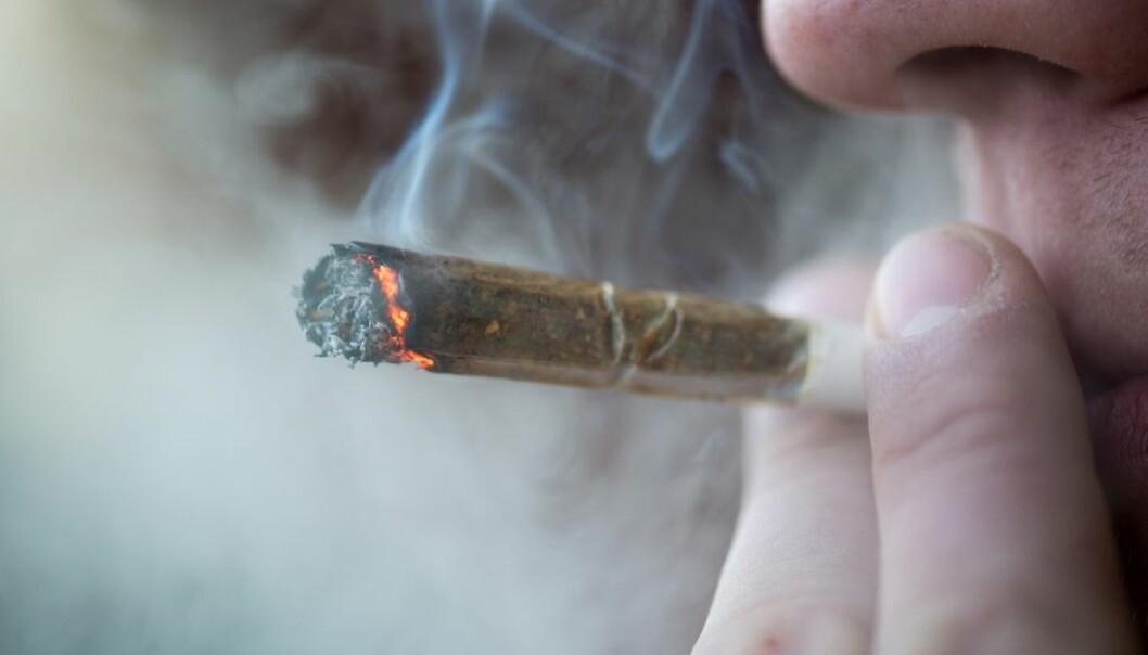 Hvordan går det med helsa når cannabisrøykere blir eldre? (Illustrasjonsfoto:  Pe3k/Shutterstock/NTB scanpix.)