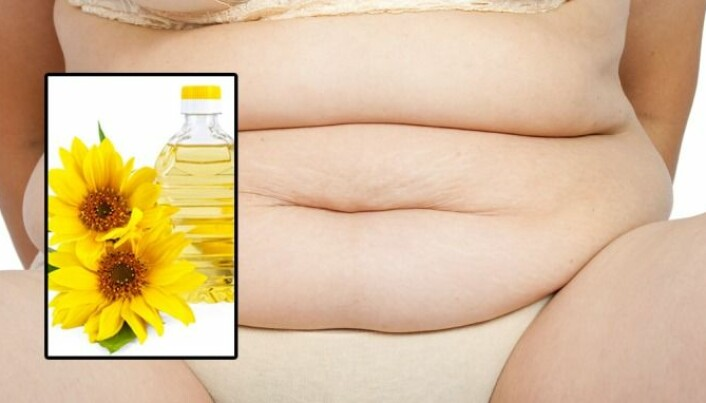 Vegetable oils promote obesity