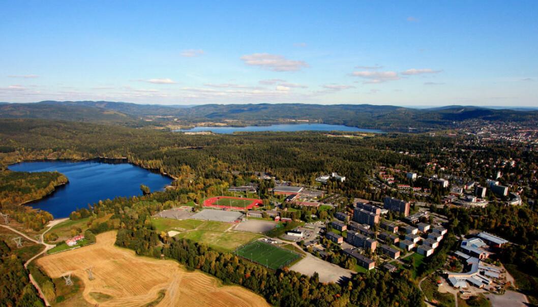 De ansatte på Norges idrettshøgskole er flinke til å forske og få forskningen publisert i anerkjente tidsskrifter, mener rektor Kari Bøe. (Foto: Løchenmediaweb/Terje Løchen/NIH.)