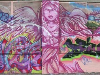 From the Graffiti Hall of Fame in Harlem, New York. The pink angel is taken from a wall that honours female graffiti pioneers, made by some of today's foremost female artists: TOO FLY, QUEEN ANDREA, FEVER, DIVA, MUCK, DONA and INDIE. The angel was made by TOO FLY.  (Photo: Carl Petter Opsahl)
