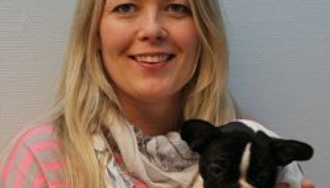 Elena R. Moldal has examined 81 animals for post operative stress (Photo: NVH)