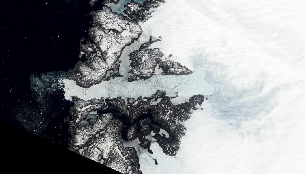 Jakobshavn-isbreen er en av de som beveger seg raskest i hele verden og sender store mengder is ut i havet. (Foto: NASA Earth Observatory)