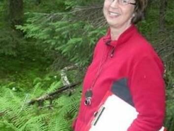Olga Hilmo in the rainforest in Nord Trøndelag, county, Norway. (Photo: NTNU)