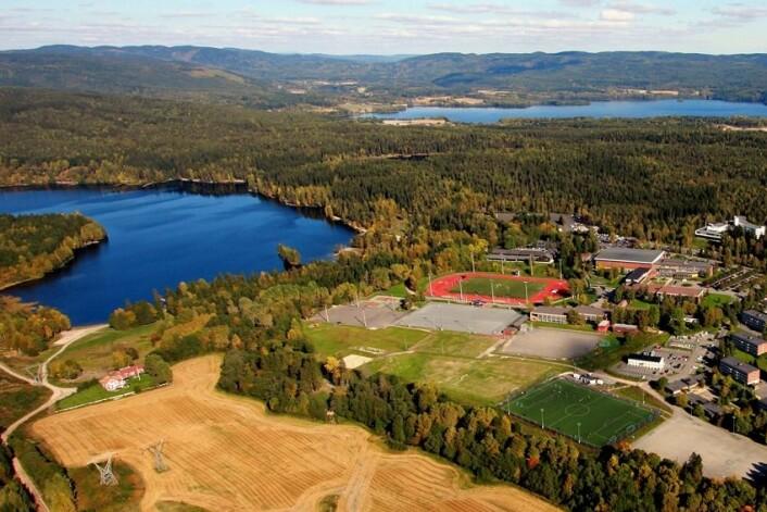 Norges idrettshøgskole gjør det godt på internasjonalisering, viser ferske tall fra U-Multirank. (Foto: Terje Løchen/NIH)