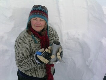 Elisabeth Isaksson has headed a project to reconstruct historical temperature fluctuations in Svalbard and North Norway. (Photo: SVICECLIM)