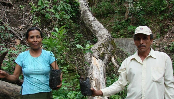 A cup of coffee with biodiversity and clean drinking water, please