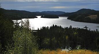 Kronikk: Handlingsplanen for naturmangfold lover for lite