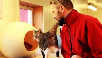 Hva prøver katten å fortelle oss?