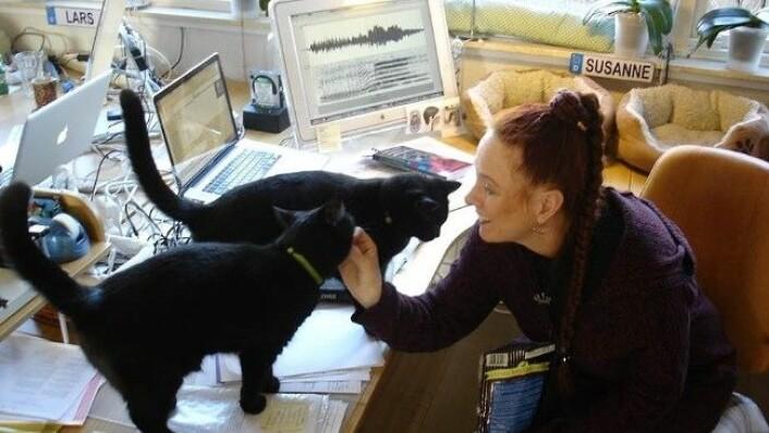 Susanne Schötz begynte å filme og gjøre opptak av sine egne katter. Hun har et studio hvor hun spiller inn kattens lyder i ulike situasjoner. (Foto: Lars Gustafsson.)